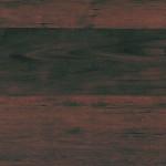 541 Třešeň tmavá